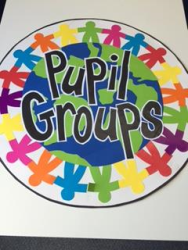 Pupil Groups